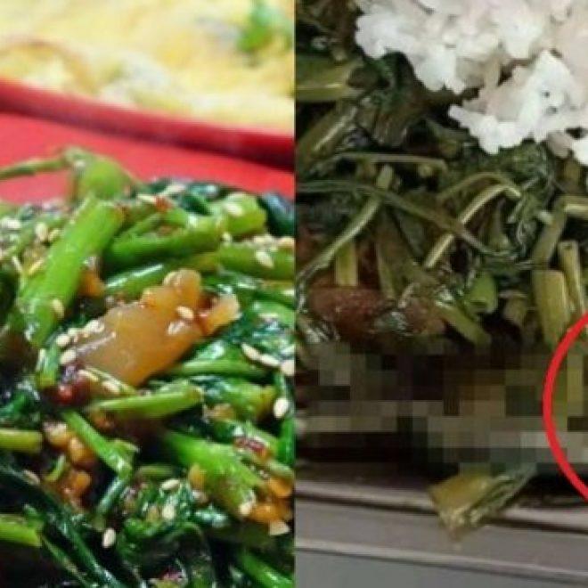 Mau Santap Sayur Kangkung, Pas Dizoom Publik Merinding Lihat Temuan Ini